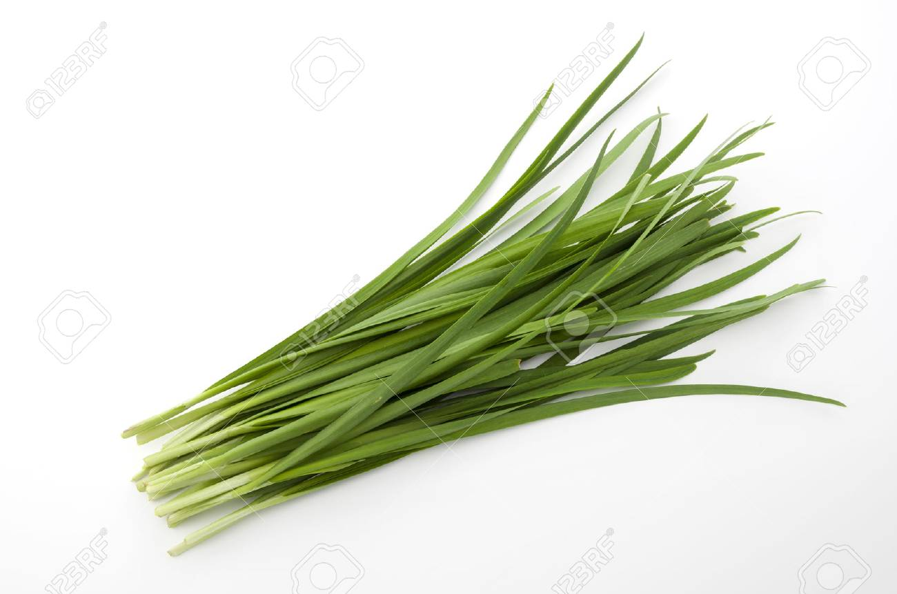 Garlic chives isolated on white background - 76822206
