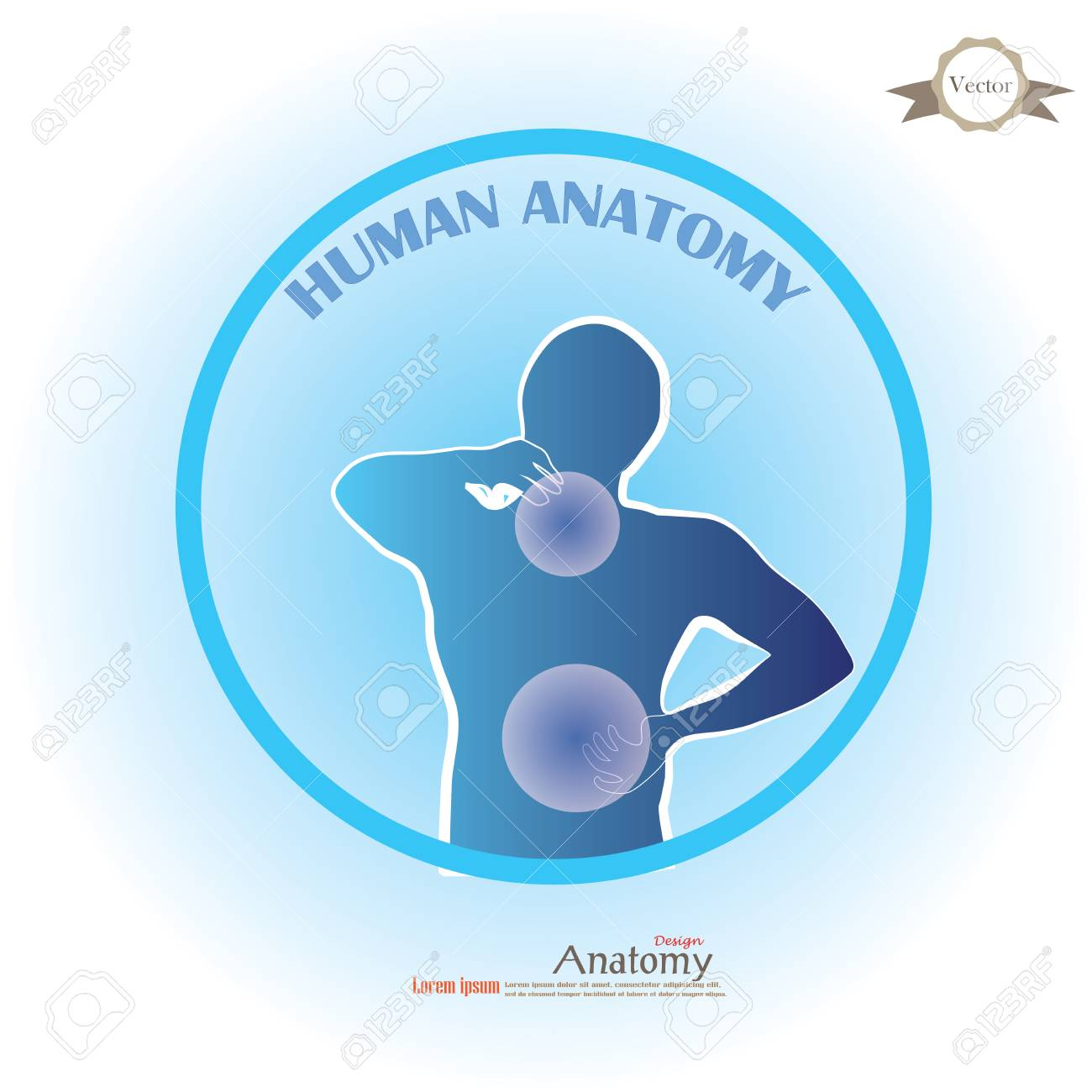 Anatomy With Pain Point.man Having Pain At Neck And Back.vector ...