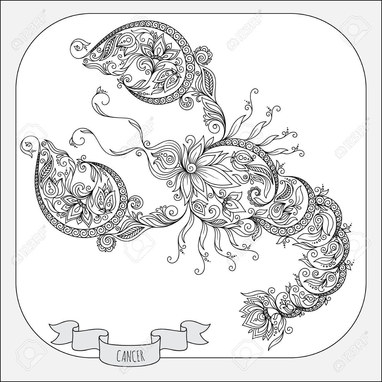 Modelo Para El Libro Para Colorear. Dibujado A Mano Línea De Flores ...