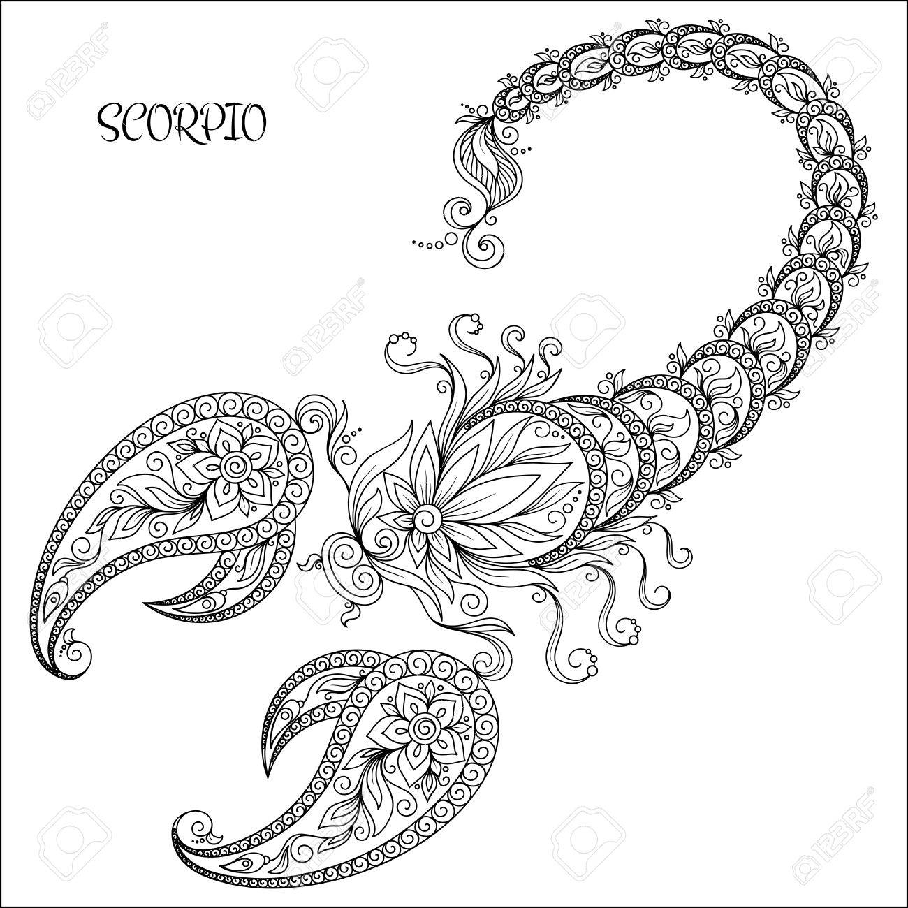Pattern for coloring book. Hand drawn line flowers art of zodiac Scorpio. Horoscope symbol for your use. For tattoo art, coloring books set. - 49172367