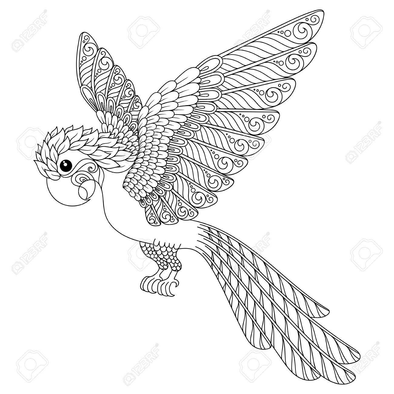 Coloriage Anti Stress Perroquet.Hand Drawn Perroquet Isole Sur Fond Transparent Anti Stress Coloriage Vector Monochrome Esquisse