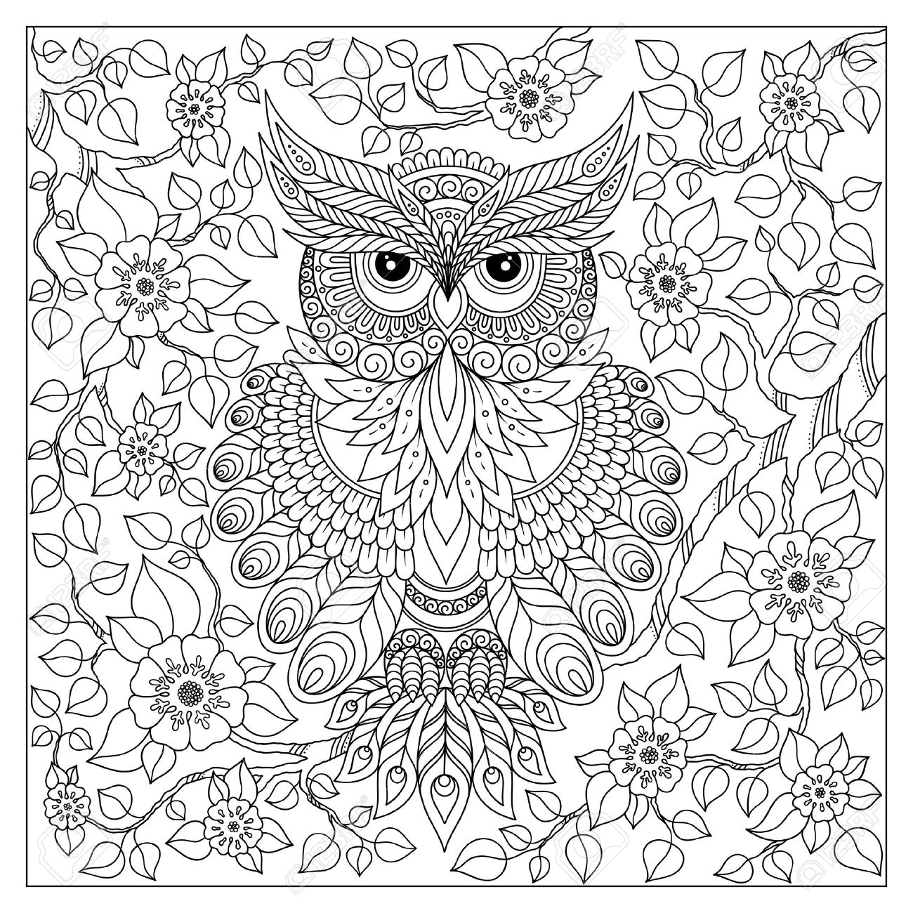 Coloring Book For Adult And Older Children. Coloring Page With Cute Owl And  Floral Frame