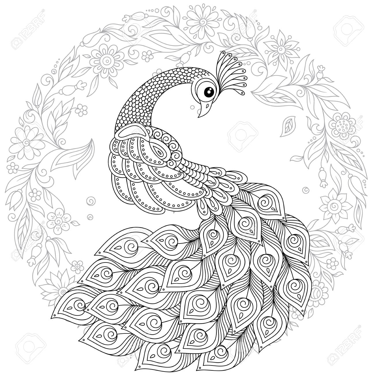 Peacock In Zentangle Style Adult Antistress Colouring Page