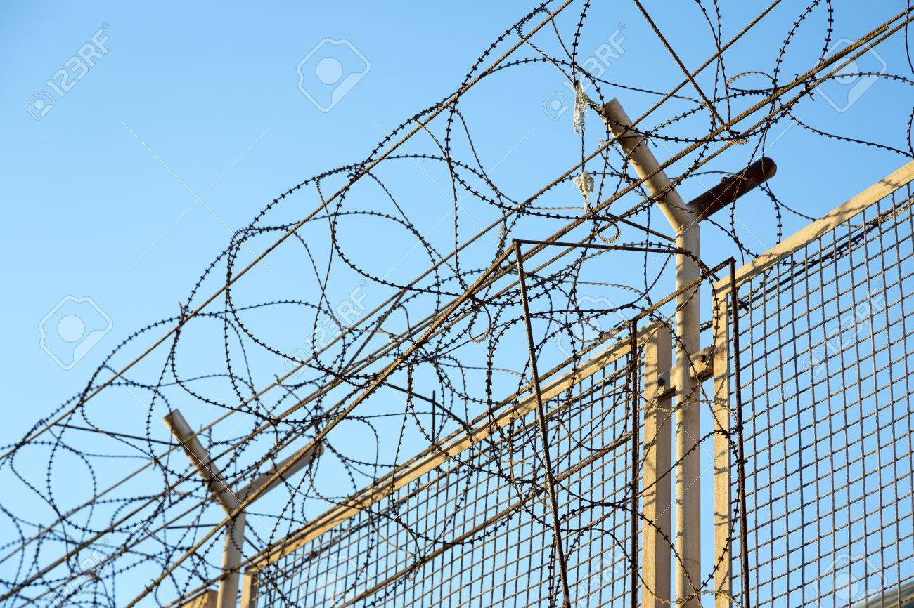 Closeup Of Coiled Razor Sharp Barbed Wire And Concrete Pole Stock ...