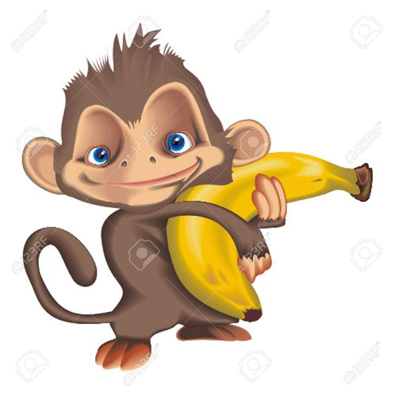 monkey - 13324872