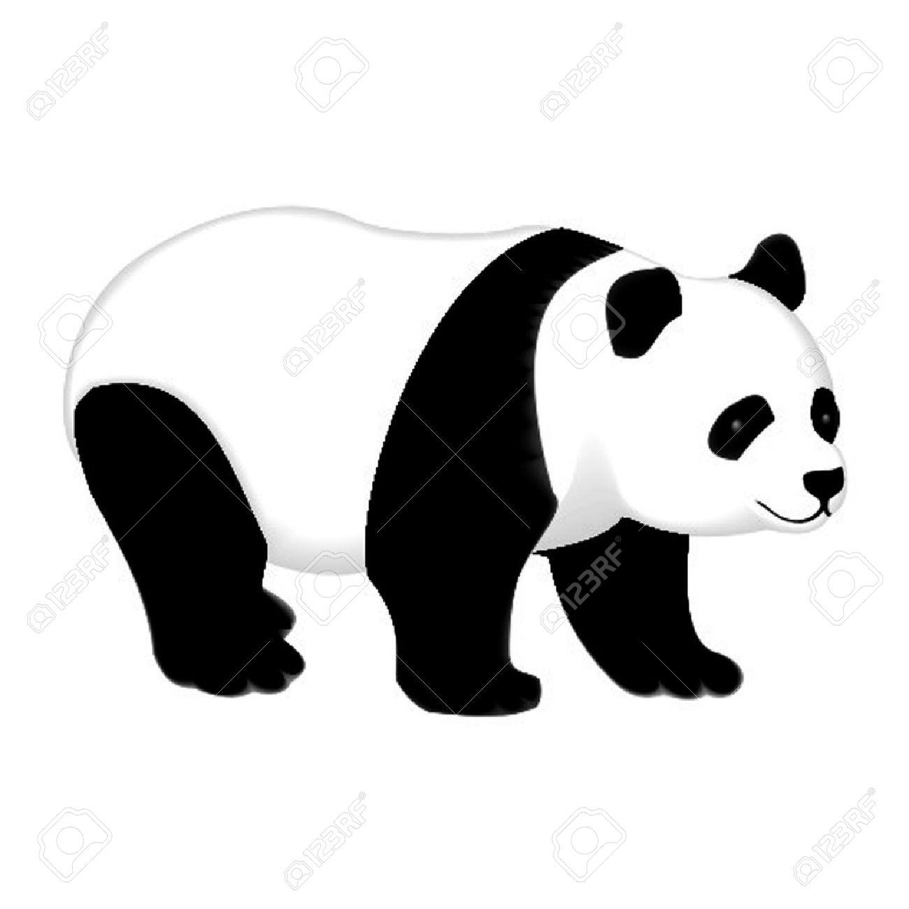 panda - 13336027