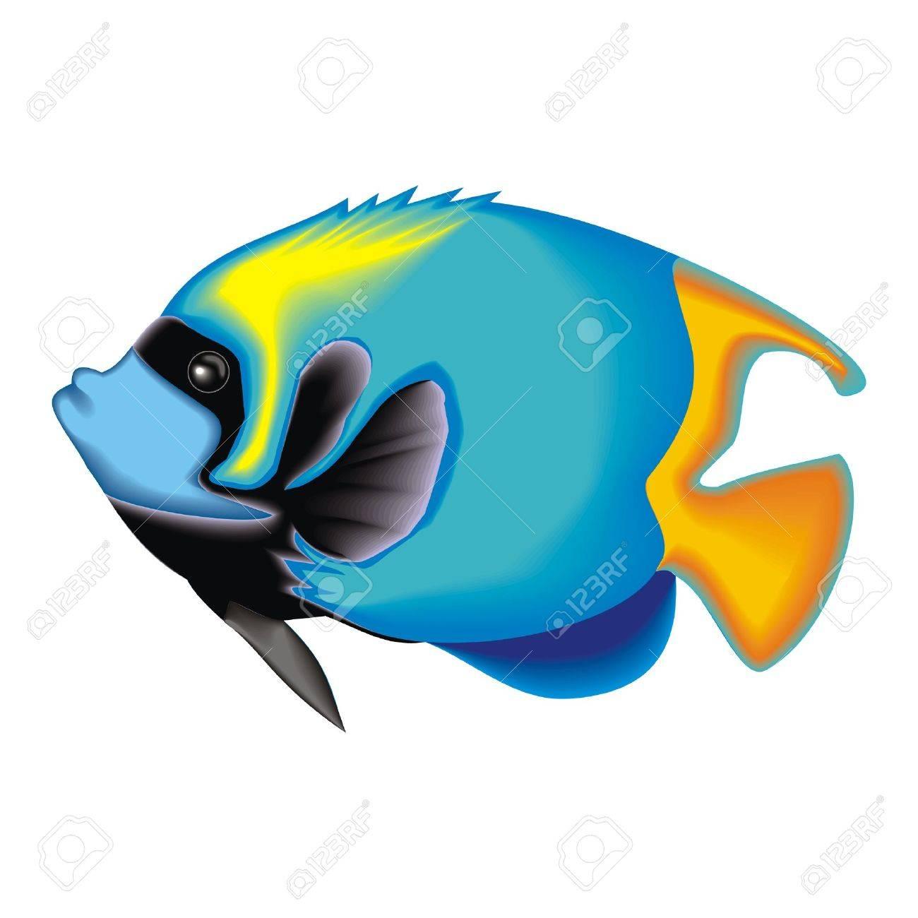 fish Stock Vector - 28458197