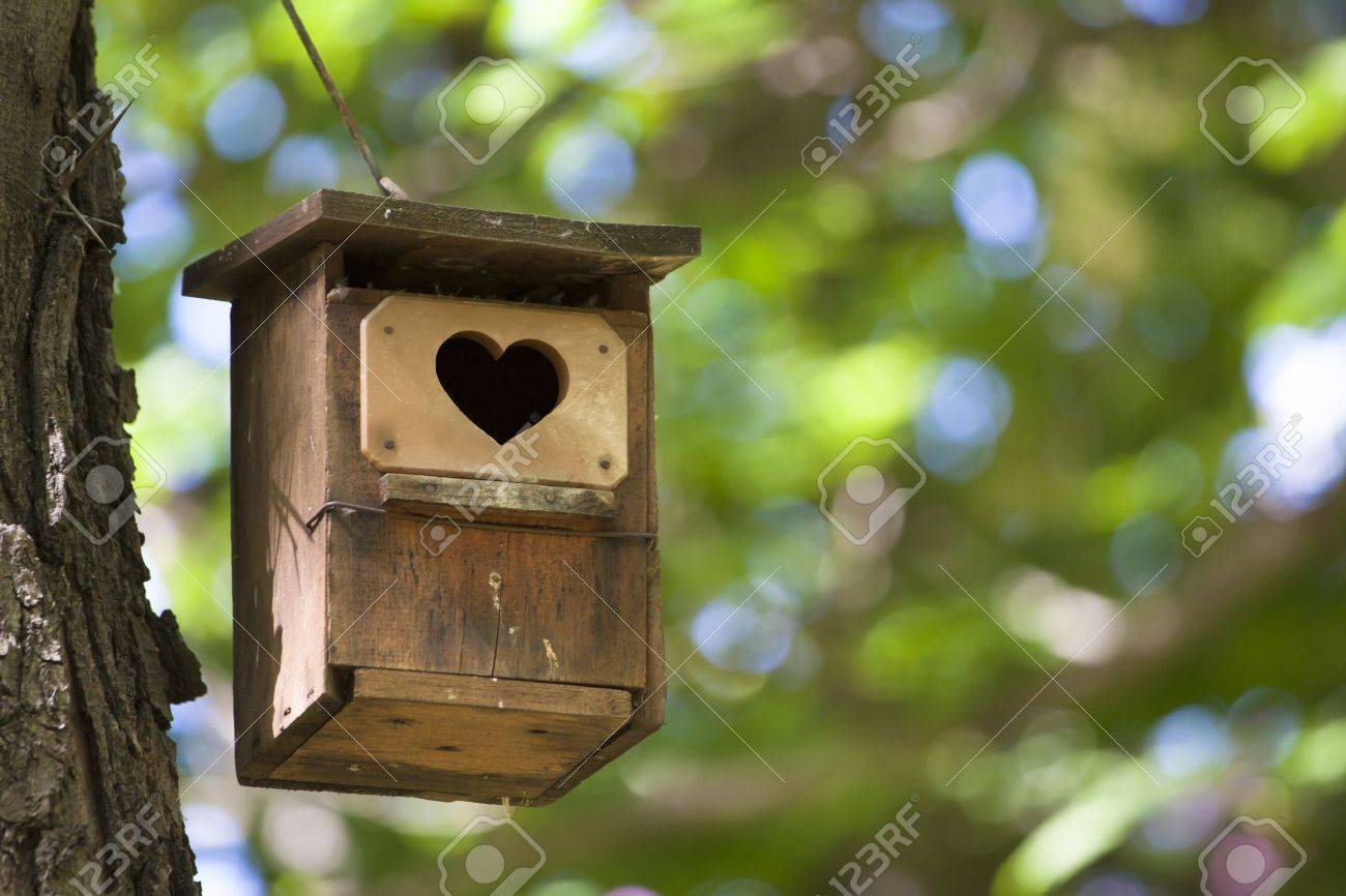 Bird house hanging from the tree with the entrance hole in the shape of a heart. Stock Photo - 10281985