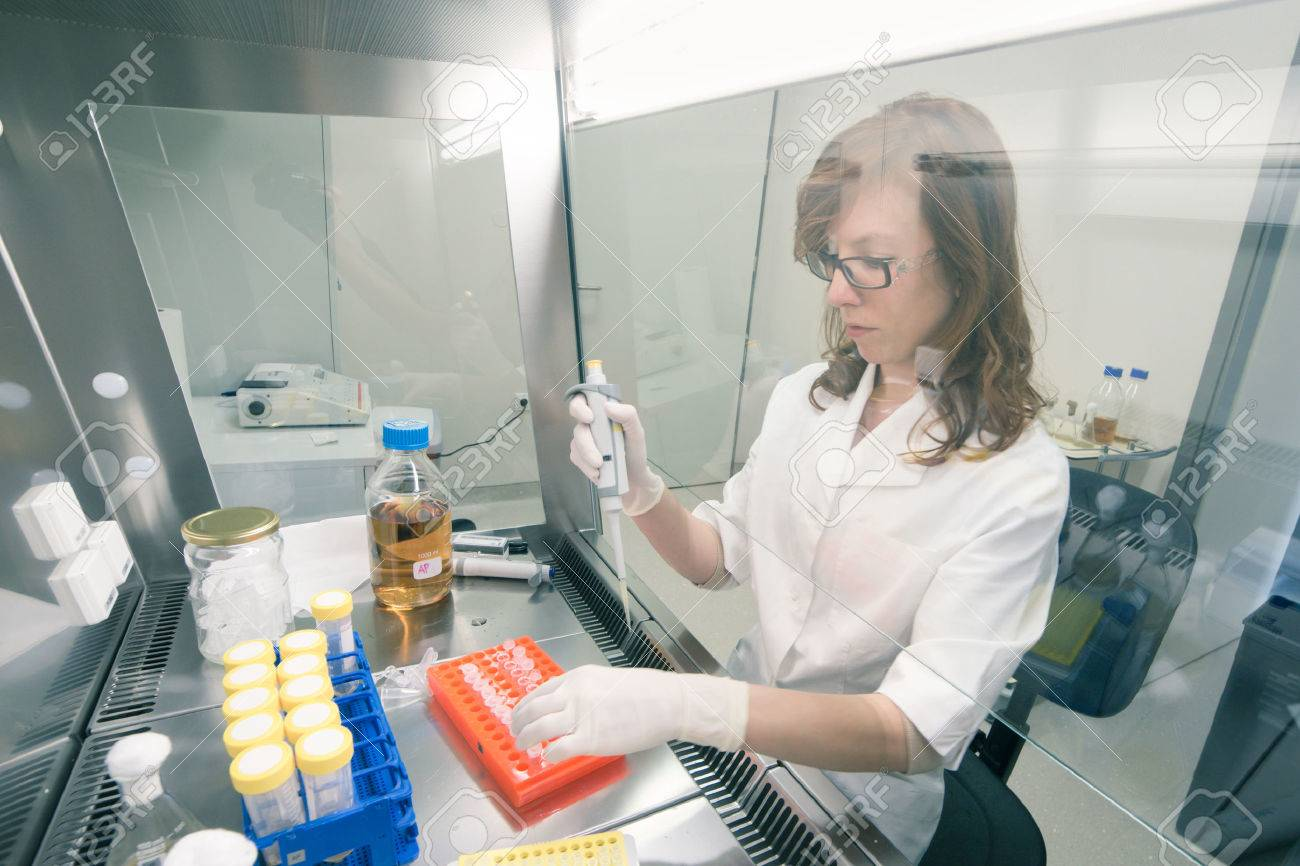 female scientist researching in laboratory pipetting cell culture female scientist researching in laboratory pipetting cell culture medium samples in laminar flow life