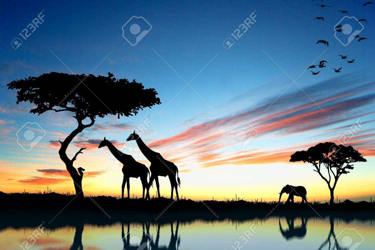 Safari in Africa  Silhouette of wild animals reflection in water Stock Photo - 15764151