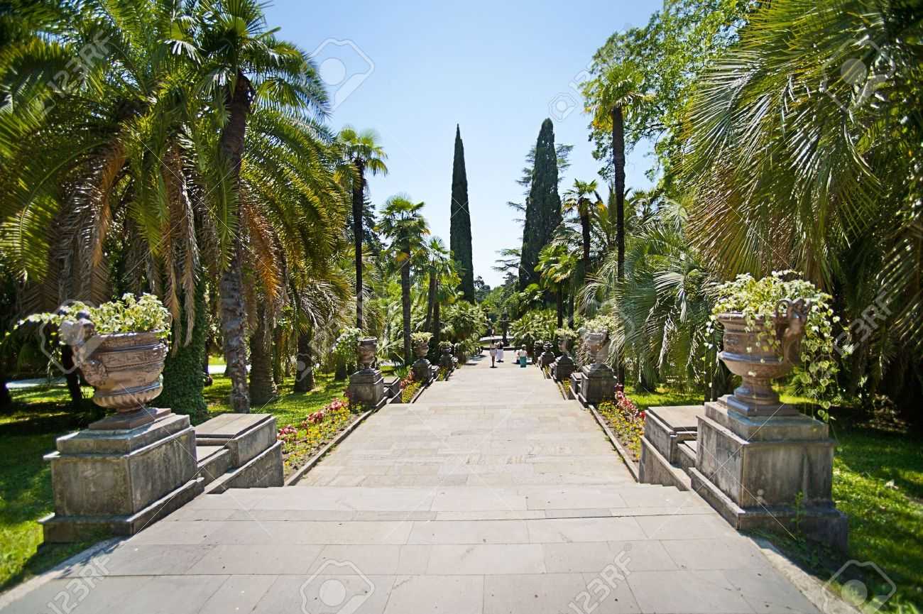 Beautiful Tropical garden with palm trees and flower beds - 14340715