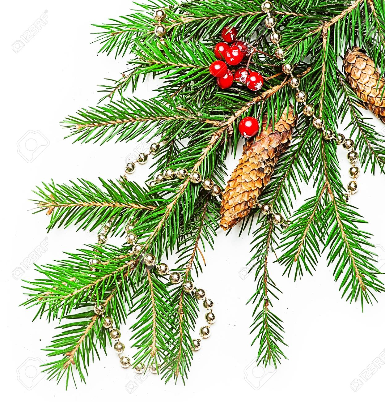 Christmas Decorations border  - beads; berry, con on fir tree branch Stock Photo - 16392195