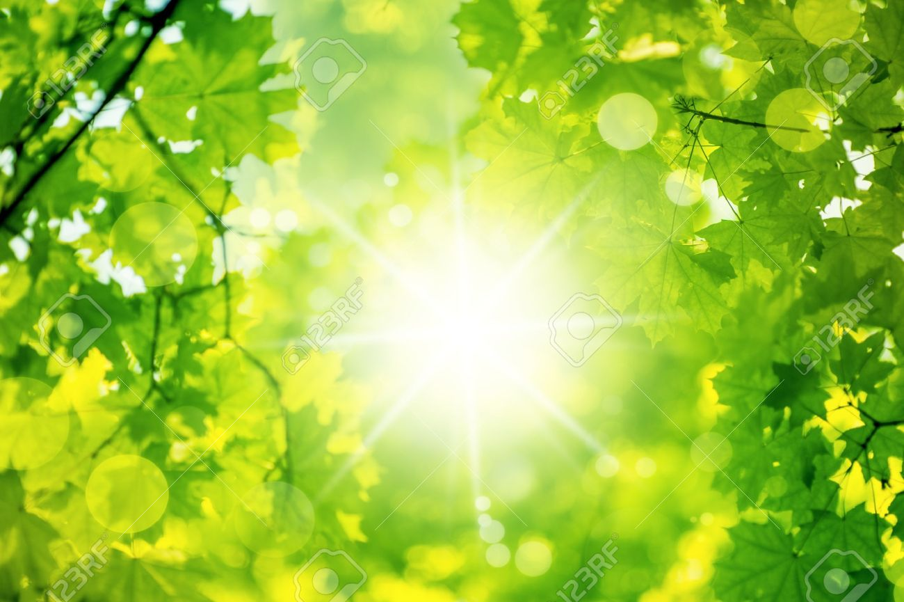 Картинки луч солнца в природе