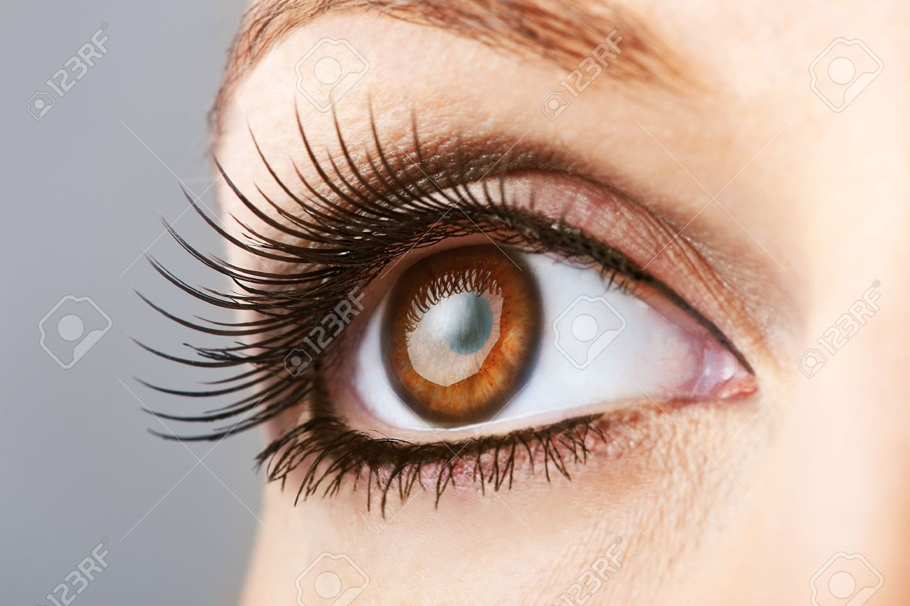 Woman Brown Eye With False Extremely Long Lashes Stock Photo ...