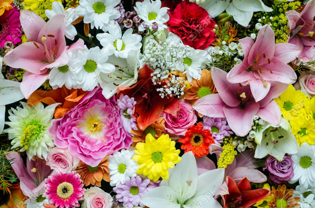 Many Colorful Flower Wall Background Stock Photo Picture And Royalty Free Image Image 58879477