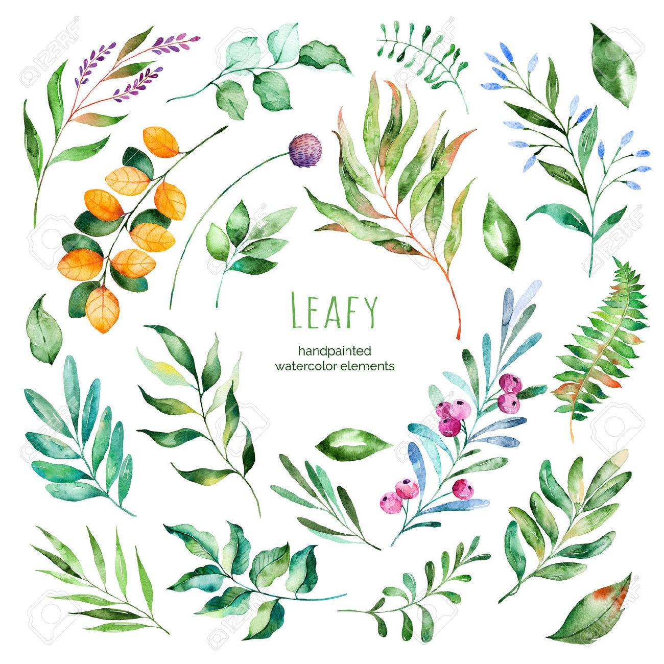 Leafy Collection22 Handpainted Floral Watercolor ElementsWatercolor Leaves Branches Berries
