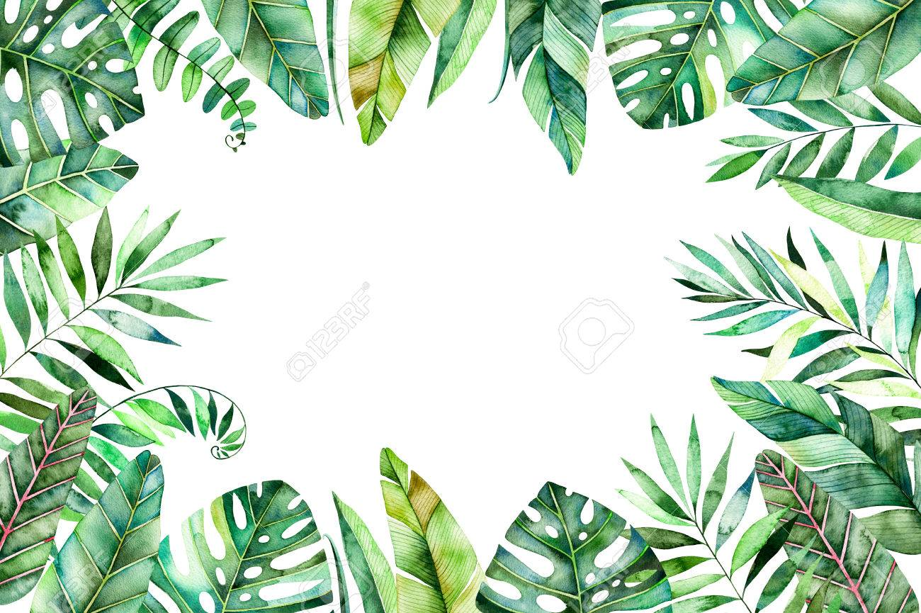 Colorful Watercolor Frame Border With Colorful Tropical Leaves Stock Photo Picture And Royalty Free Image Image 75998989 Your favourite piece from our refreshed classic collection? colorful watercolor frame border with colorful tropical leaves
