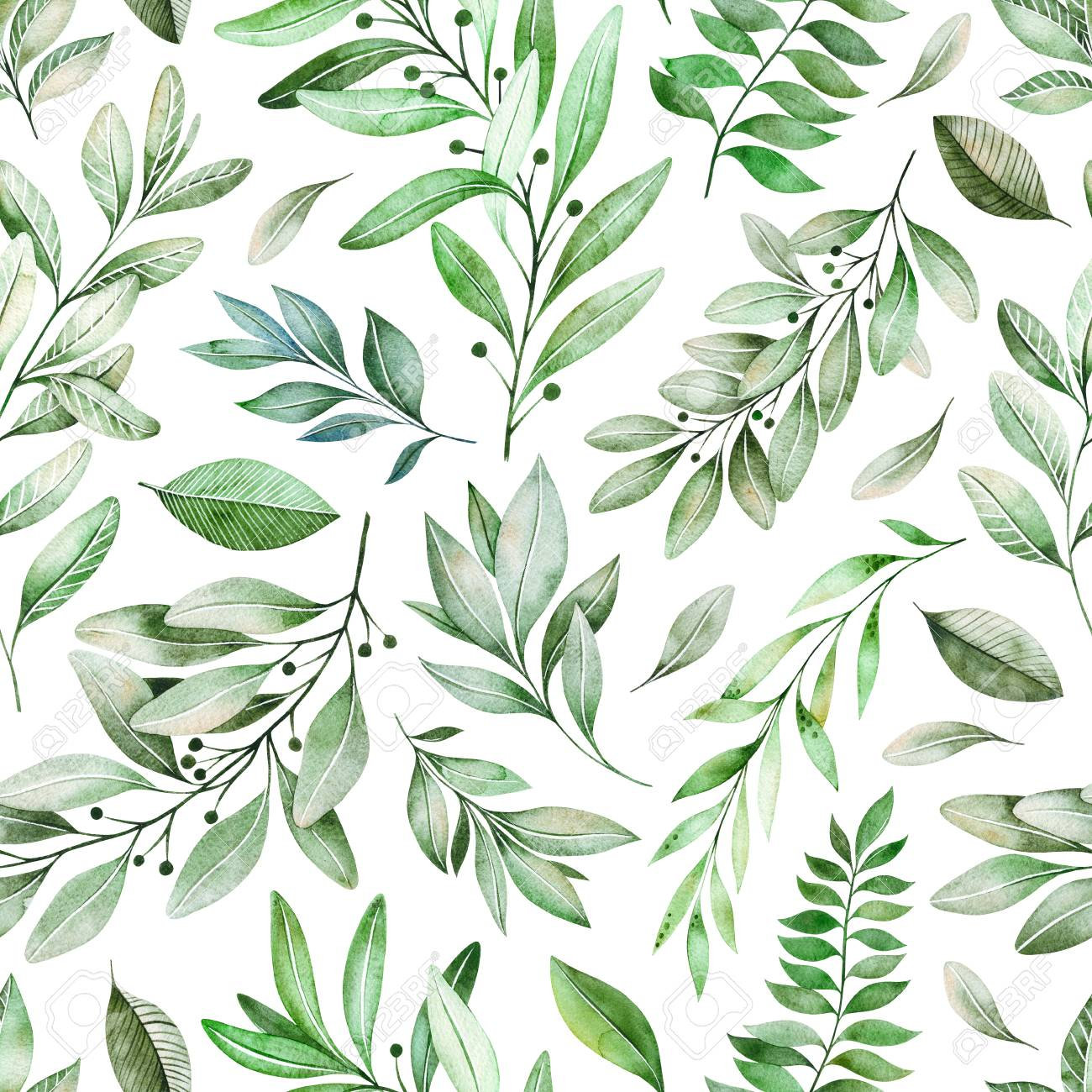 05ad61e90679 Watercolor leaves branch seamless pattern on white background...
