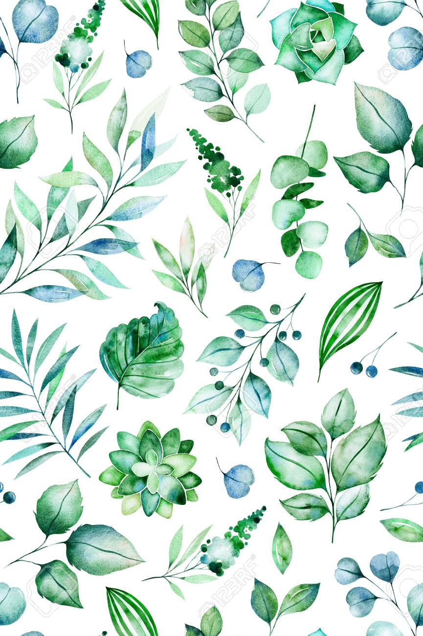 Watercolor Green Illustration Seamless Pattern With Succulent Stock Photo Picture And Royalty Free Image Image 106078578
