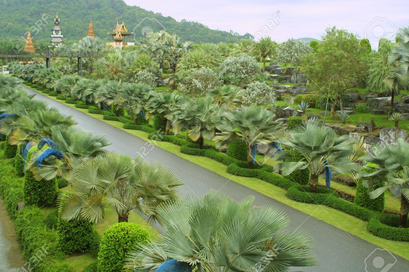 Nong Nooch Tropical Botanical Garden, Pattaya, Thailand Stock Photo - 7377402