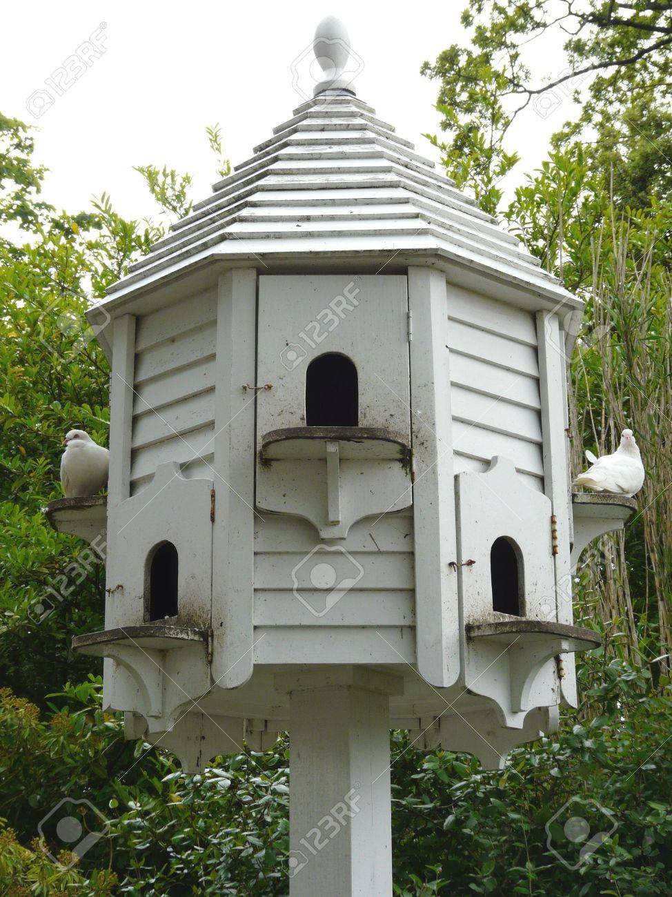Pigeon house plans and photos - White Wooden Dovecot For Pigeons With Small Arched Doorways Stock Photo 5648981