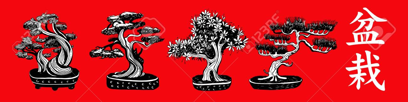 Set Of Bonsai Trees Small Trees Grown In A Tray Vector Hand Royalty Free Cliparts Vectors And Stock Illustration Image 140225594