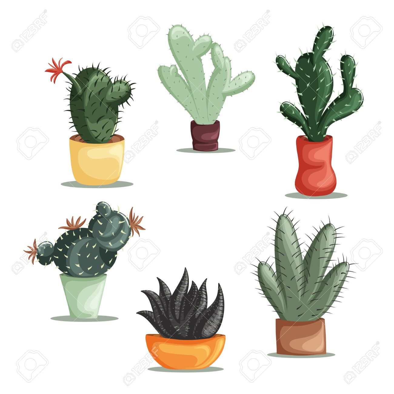 Colorful illustration of succulent plants and cactuses in pots. Vector botanical graphic set with cute florals. - 43922203