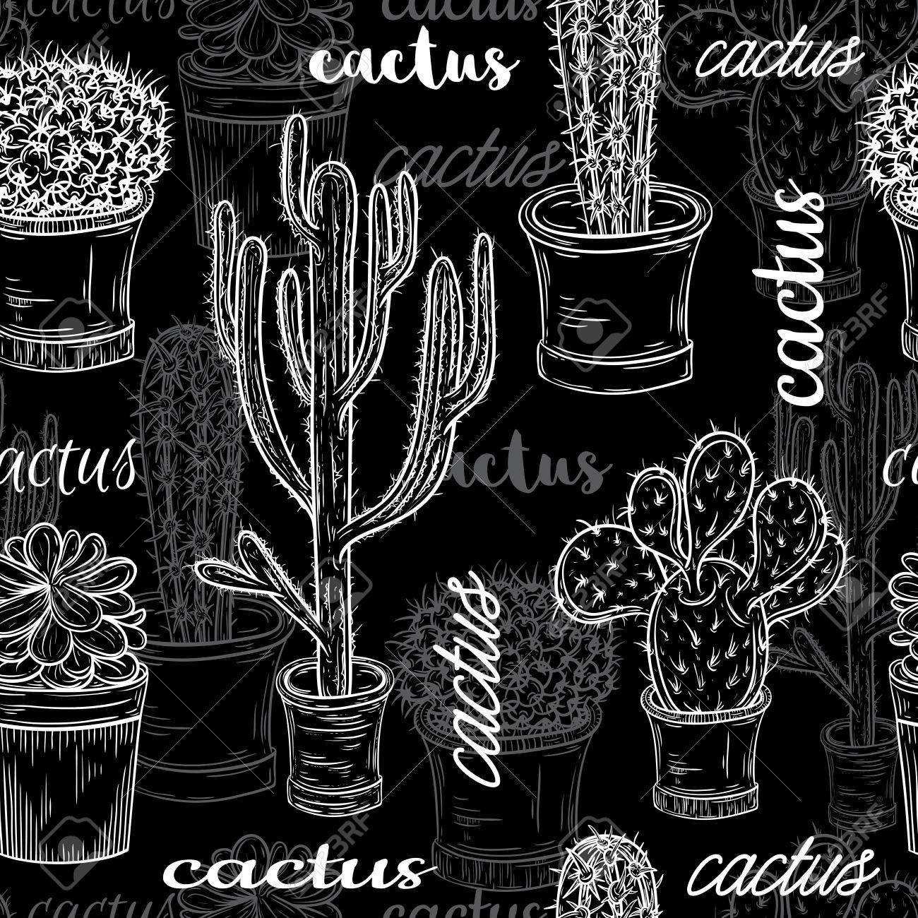 Seamless pattern with flat chalk board black and white illustration of succulent plants and cactuses in pots. Vector botanical graphic set with cute florals. - 48979383