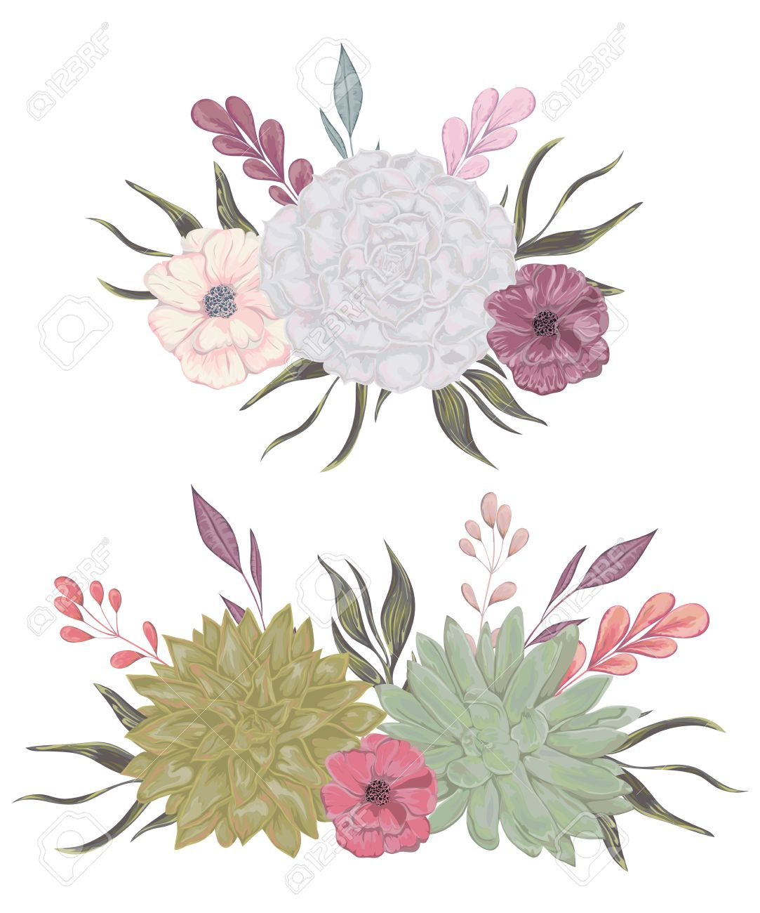 Collection decorative floral design elements for wedding invitations collection decorative floral design elements for wedding invitations and birthday cards succulents flowers and junglespirit Images