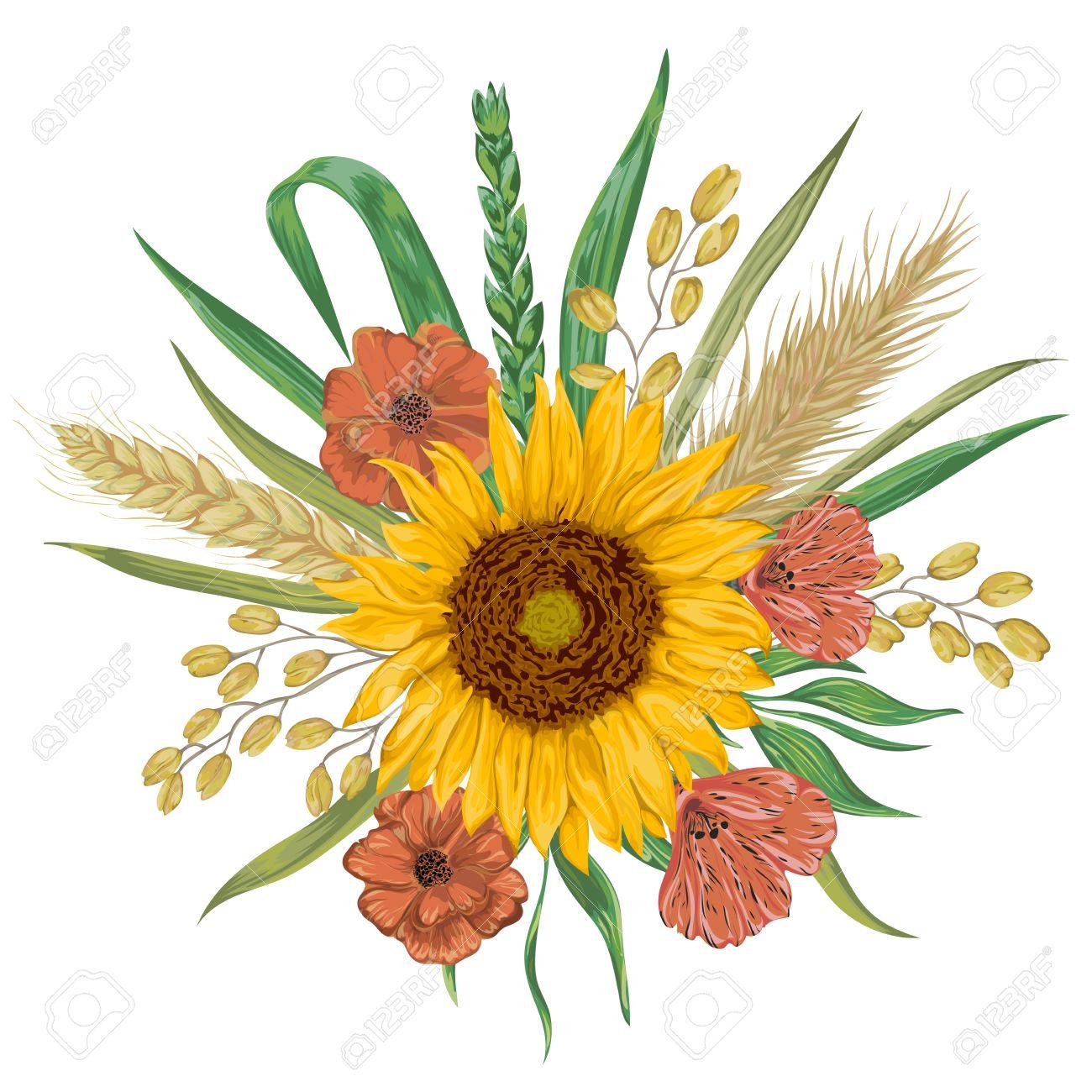 Sunflower, barley, wheat, rye, rice, poppy  Collection decorative