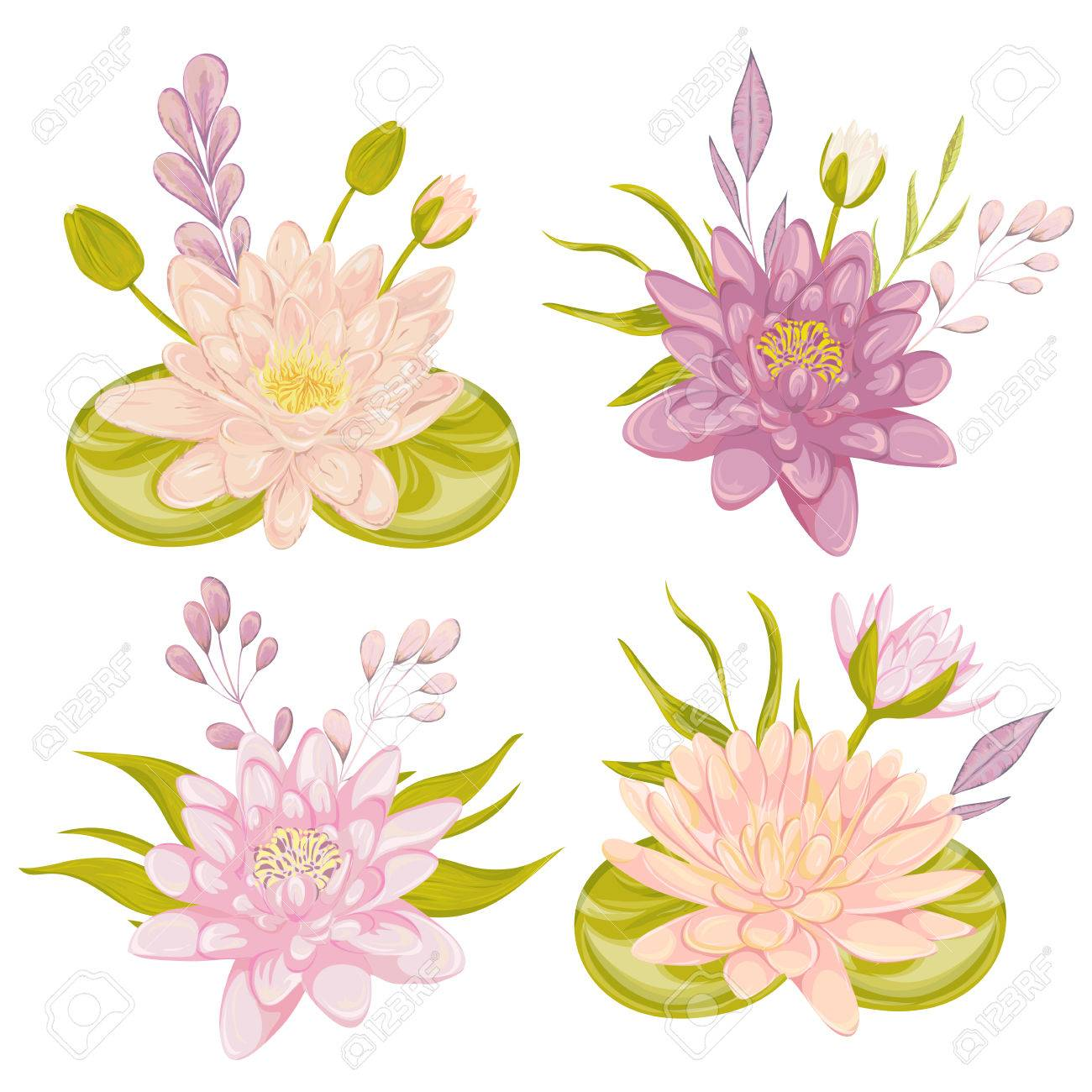 Water lily set collection decorative floral design elements collection decorative floral design elements for wedding invitations and birthday cards flowers leaves and buds vintage hand drawn vector illustration in izmirmasajfo