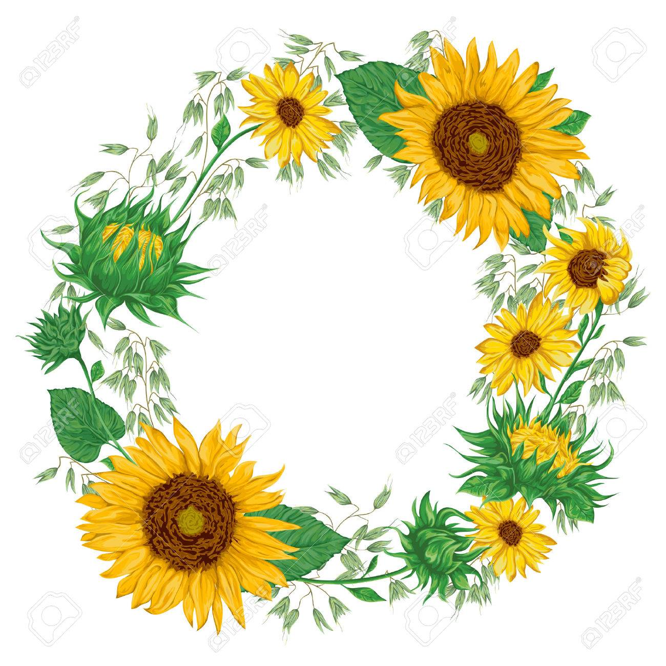 Wreath With Sunflowers And Oat Rustic Floral Background Vintage Royalty Free Cliparts Vectors And Stock Illustration Image 69916937