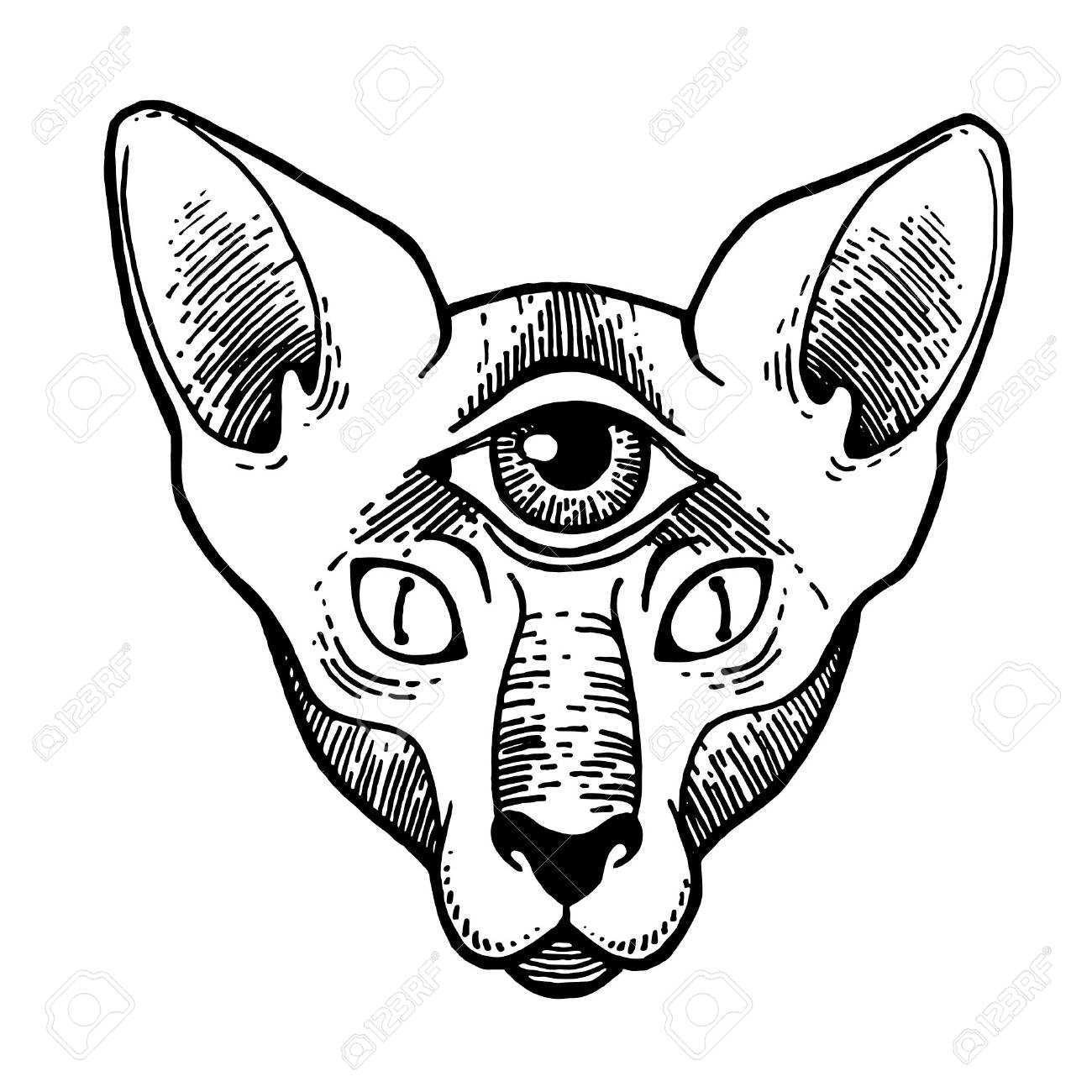 Tattoo Design Of Cat With 3 Eyes Artwork For Print And Textiles