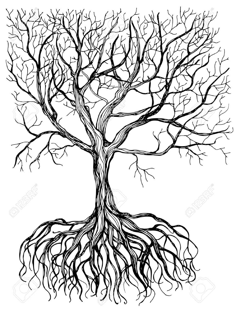 Arbre Avec Racine hand - attirée arbre avec racine sur fond blanc. clip art libres de