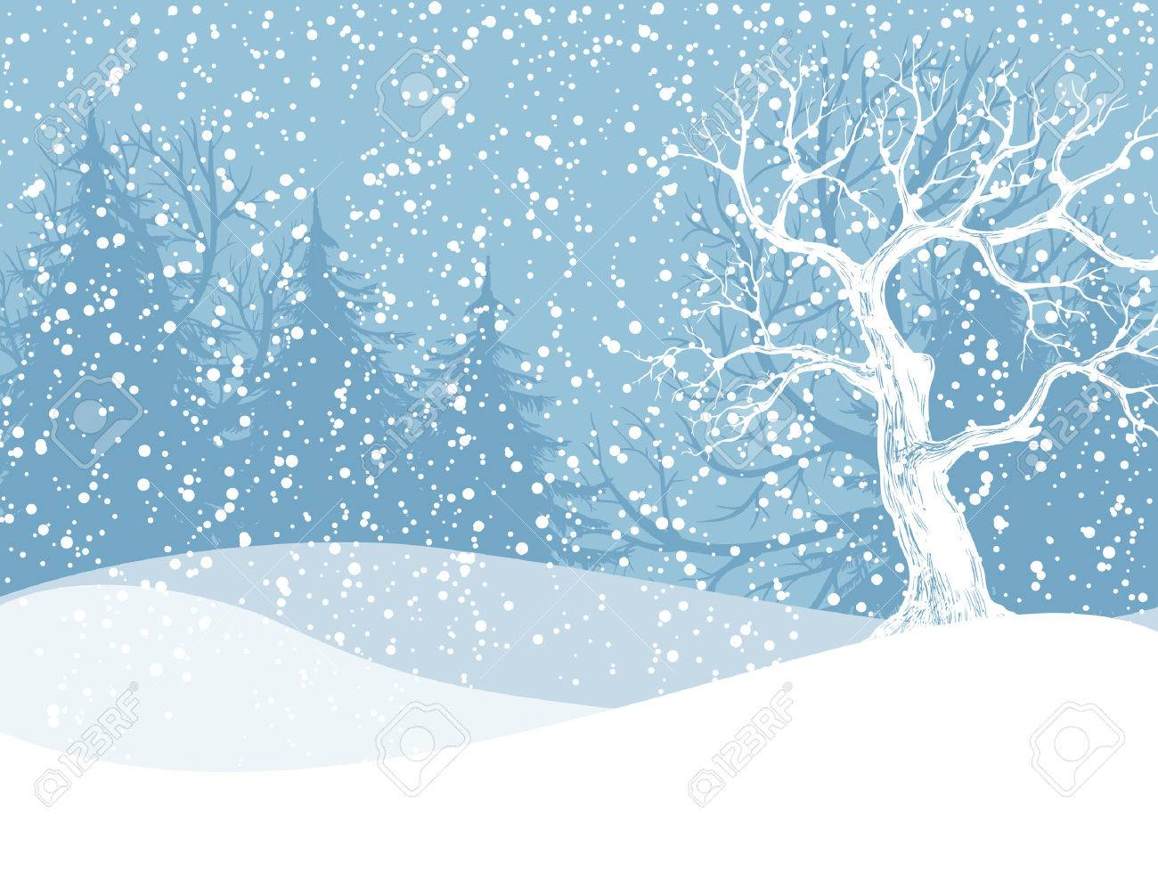 Winter landscape with fir trees and falling snow. Christmas illustration. Vector illustration contains gradient meshes. - 50018529