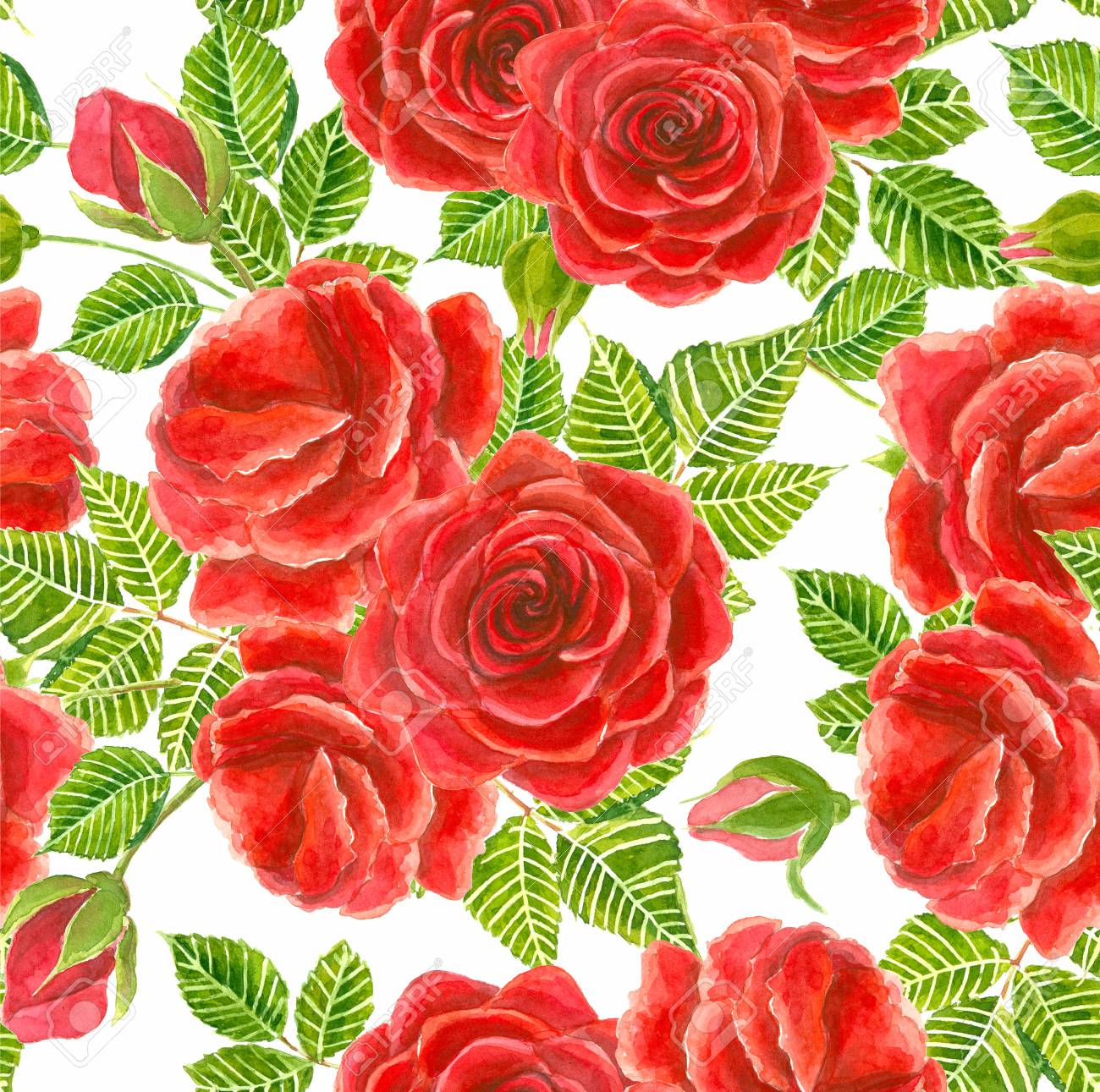 Red Roses With Leaves And Buts Painted In Watercolor. Seamless ...