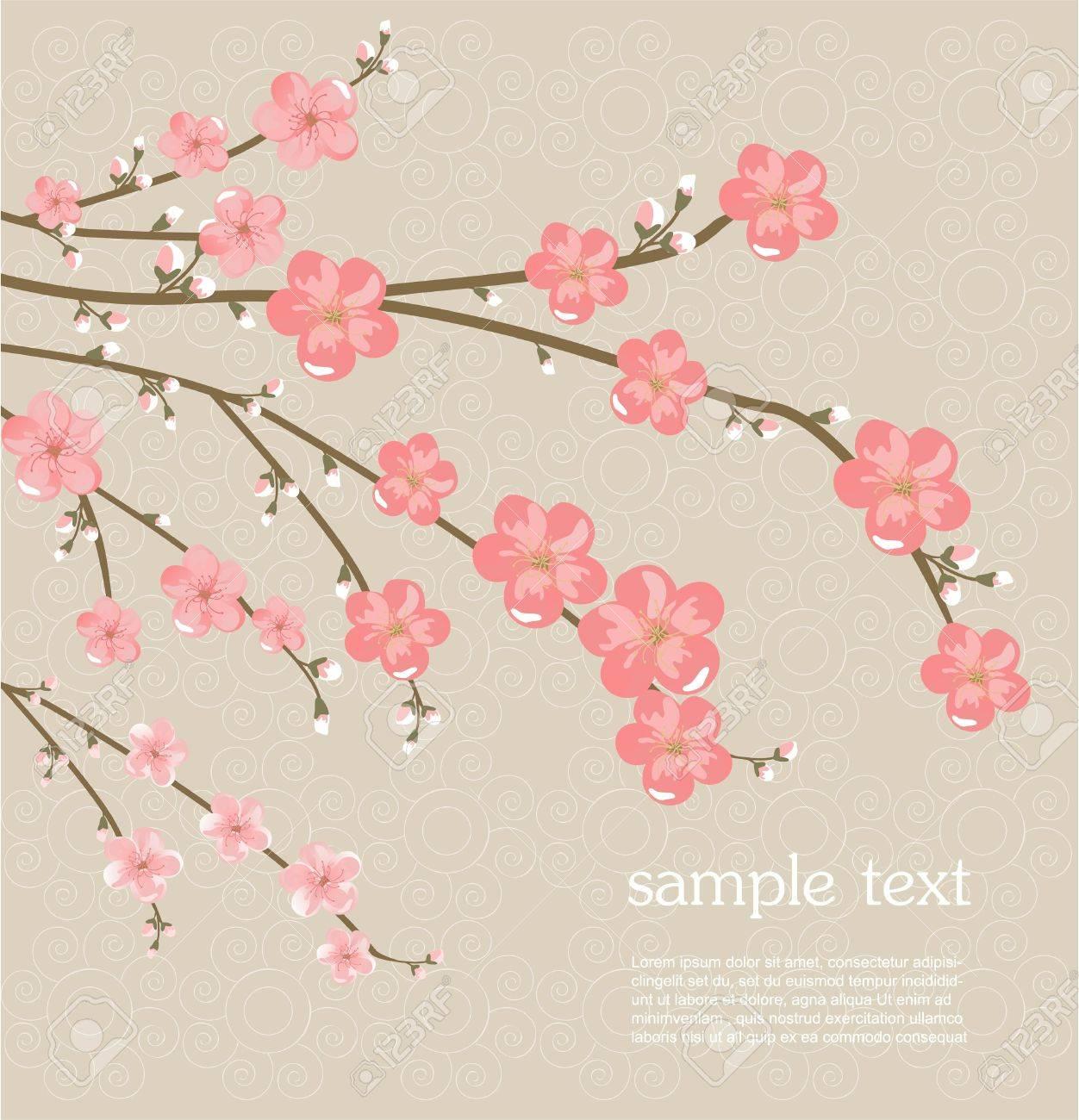 Cherry blossom card Stock Vector - 17598877