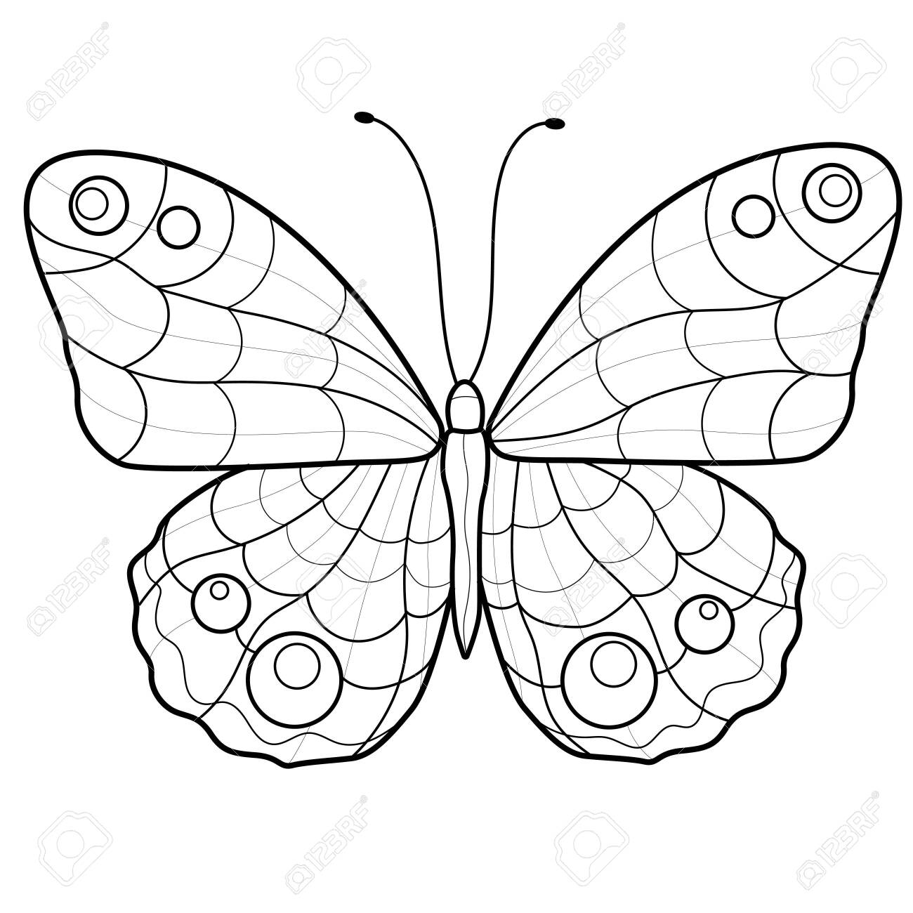 Beautiful butterfly. Coloring book antistress for children and adults. Illustration isolated on white background. Zen tangle style. Black and white drawing. - 153815578