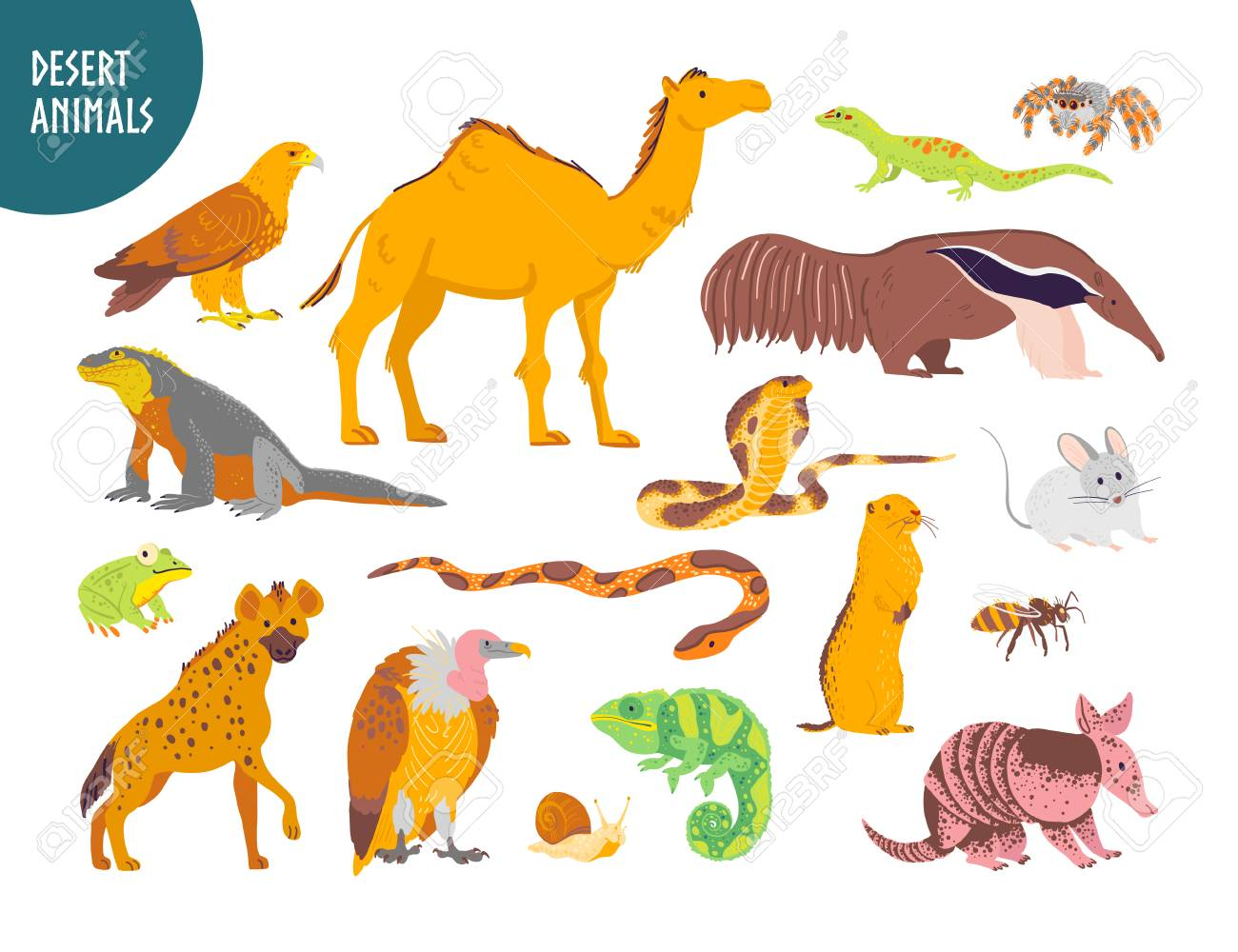 Vector collection of flat hand drawn desert animal, reptiles, insects: camel, snake, lizard isolated on white background. For children book illustration, alphabet, zoo emblems, banners, infographics. - 124768625