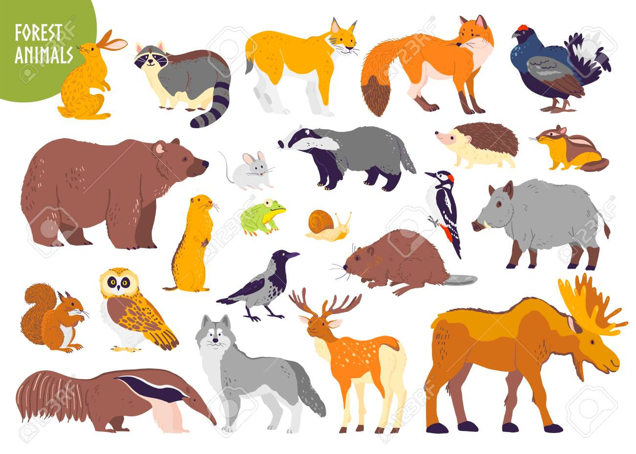 Vector collection of forest animals and birds: bear, fox, hare, owl isolated on white background. Flat hand drawn style. Good for children book illustration, alphabet, woodland banner, zoo emblem etc. - 124732792