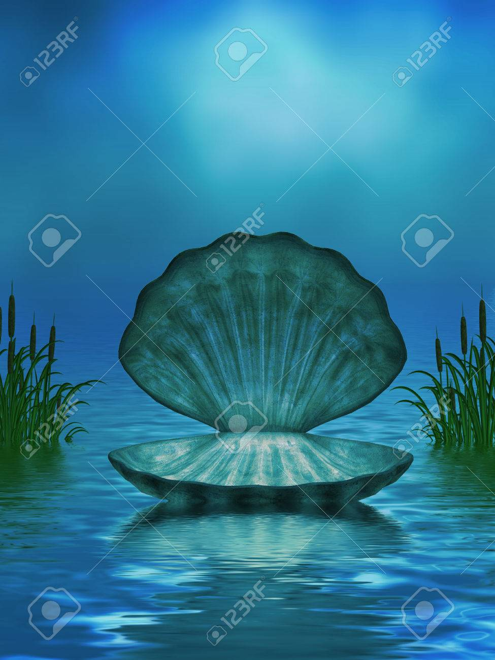 Beautiful ocean background with seashell and cattails Stock Photo - 25315528