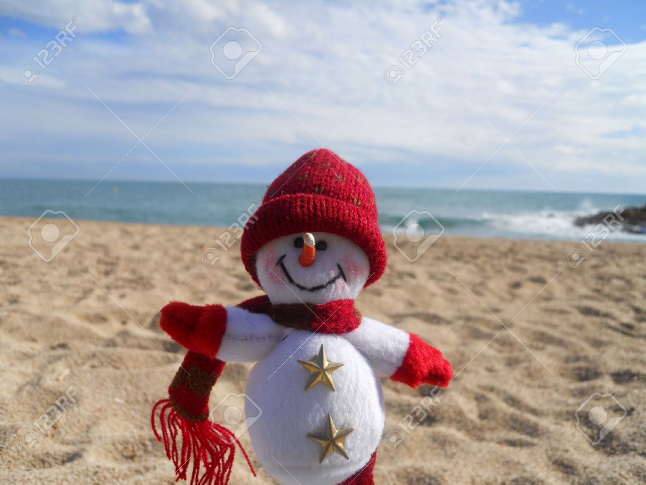 winter vacation (snowman at the beach) - 8879406