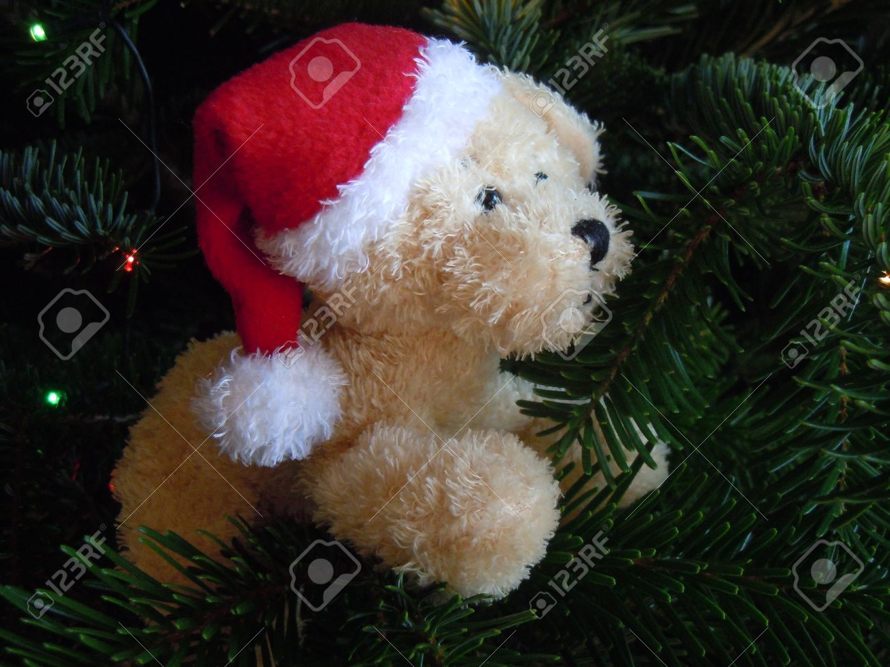 Stuffed Animal Toy Dog And Christmas Tree Stock Photo Picture And