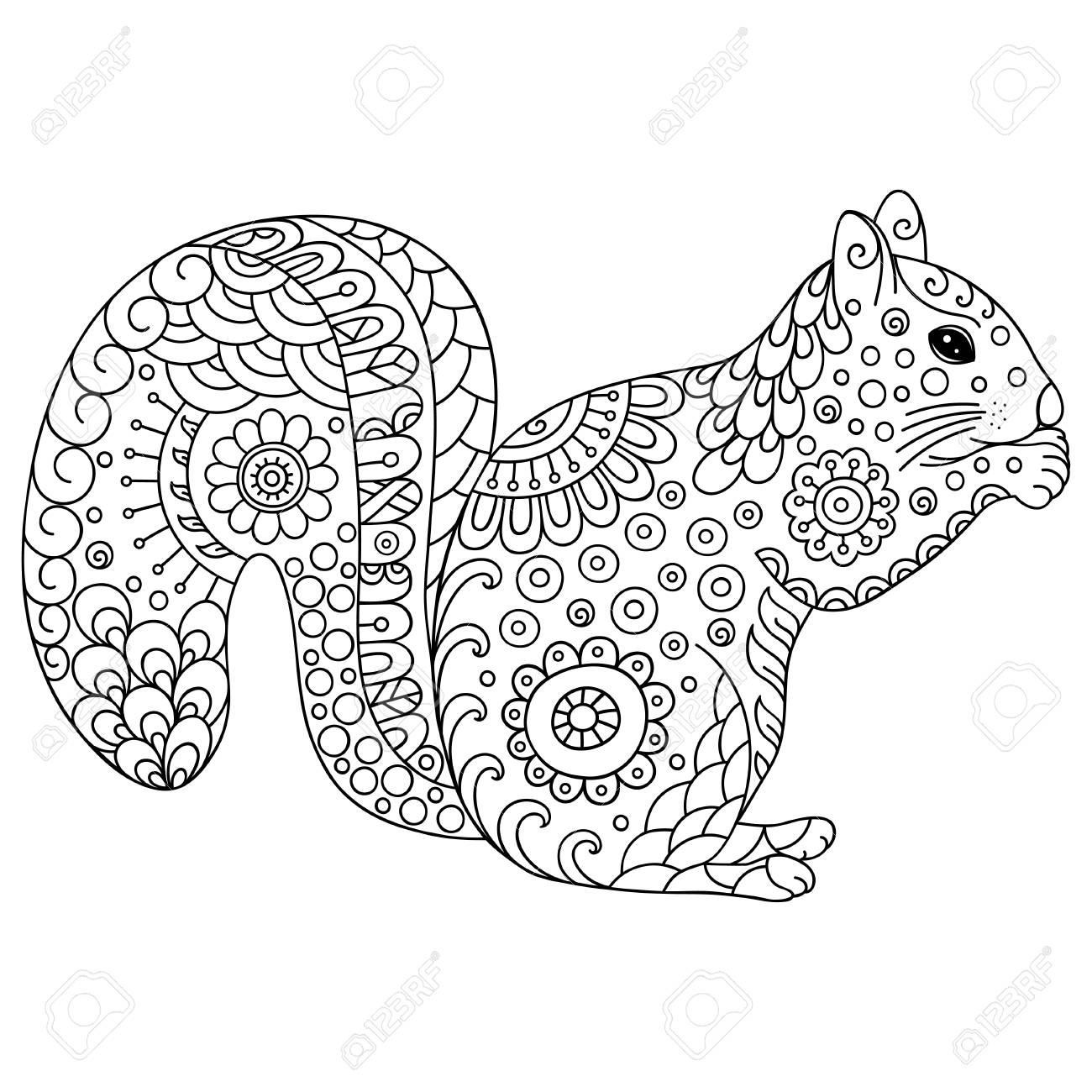 Stilisierten Eichhörnchen Skizze Für Malbuch Plakat Druck Oder