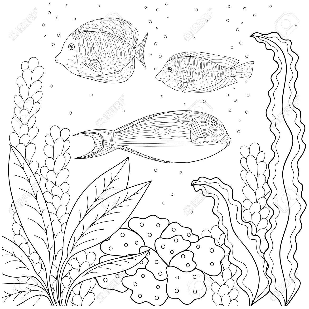Motif de Doodle en noir et blanc. Modèle marin pour cahier de coloriage.  Mer, poisson, algues, bulles. Livre à colorier pour enfants et adultes.