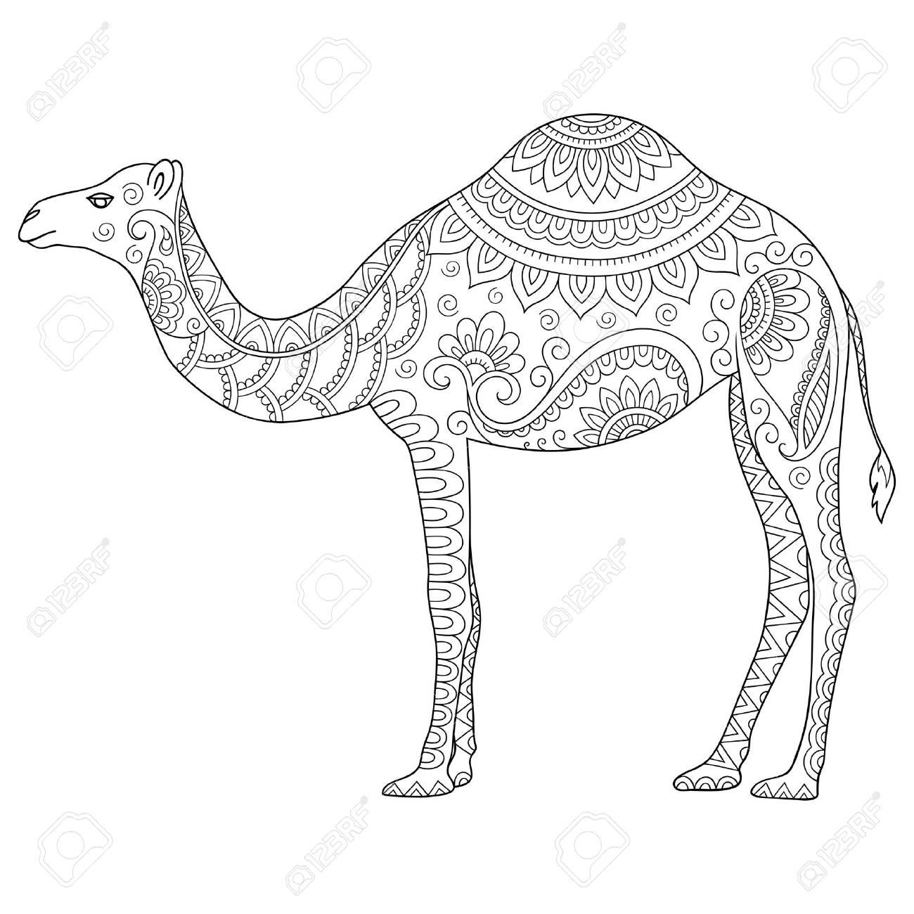 Garabatos Camello Estilizada. Boceto De Libro Para Colorear De ...