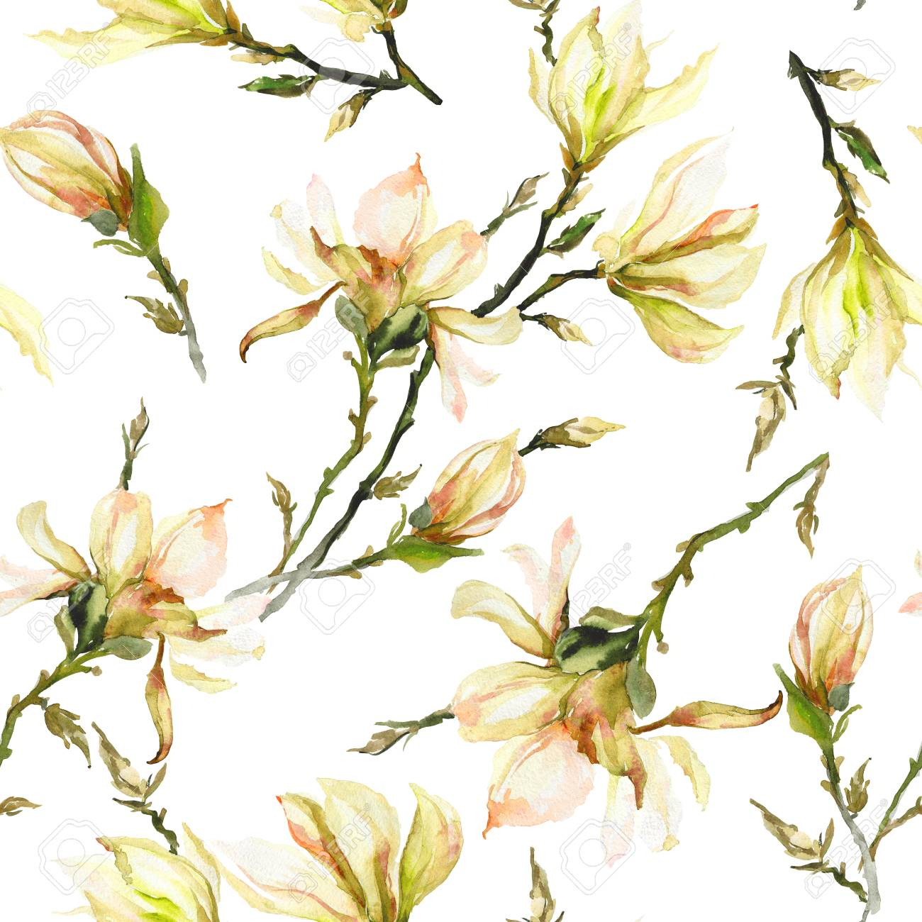 Yellow Magnolia Flowers On A Twig On White Background Seamless