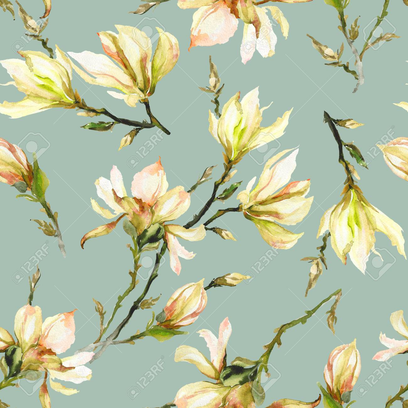 Yellow Magnolia Flowers On A Twig On Light Green Background Stock