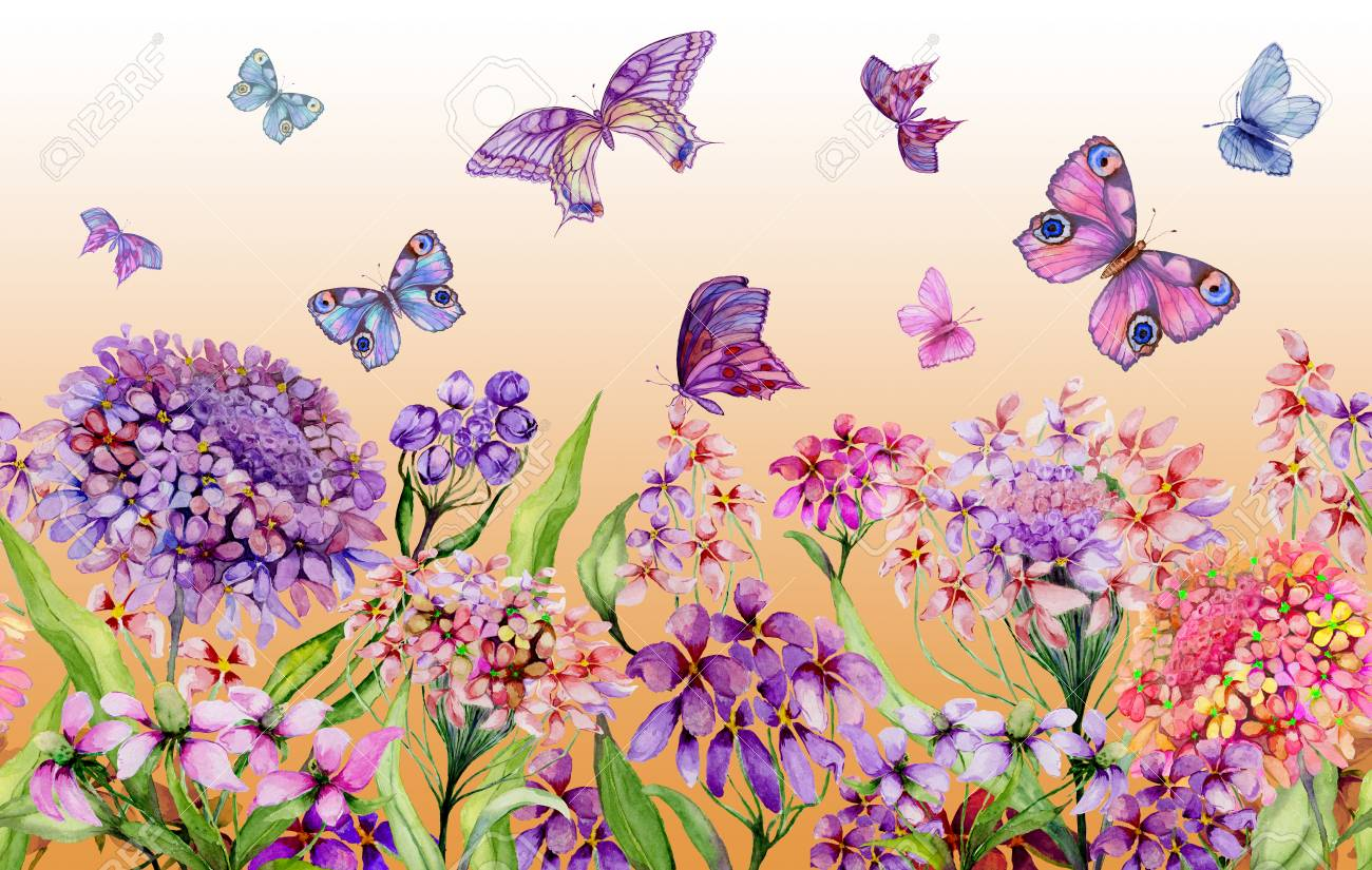 Summer Wide Banner Vivid Iberis Flowers And Colorful Butterflies