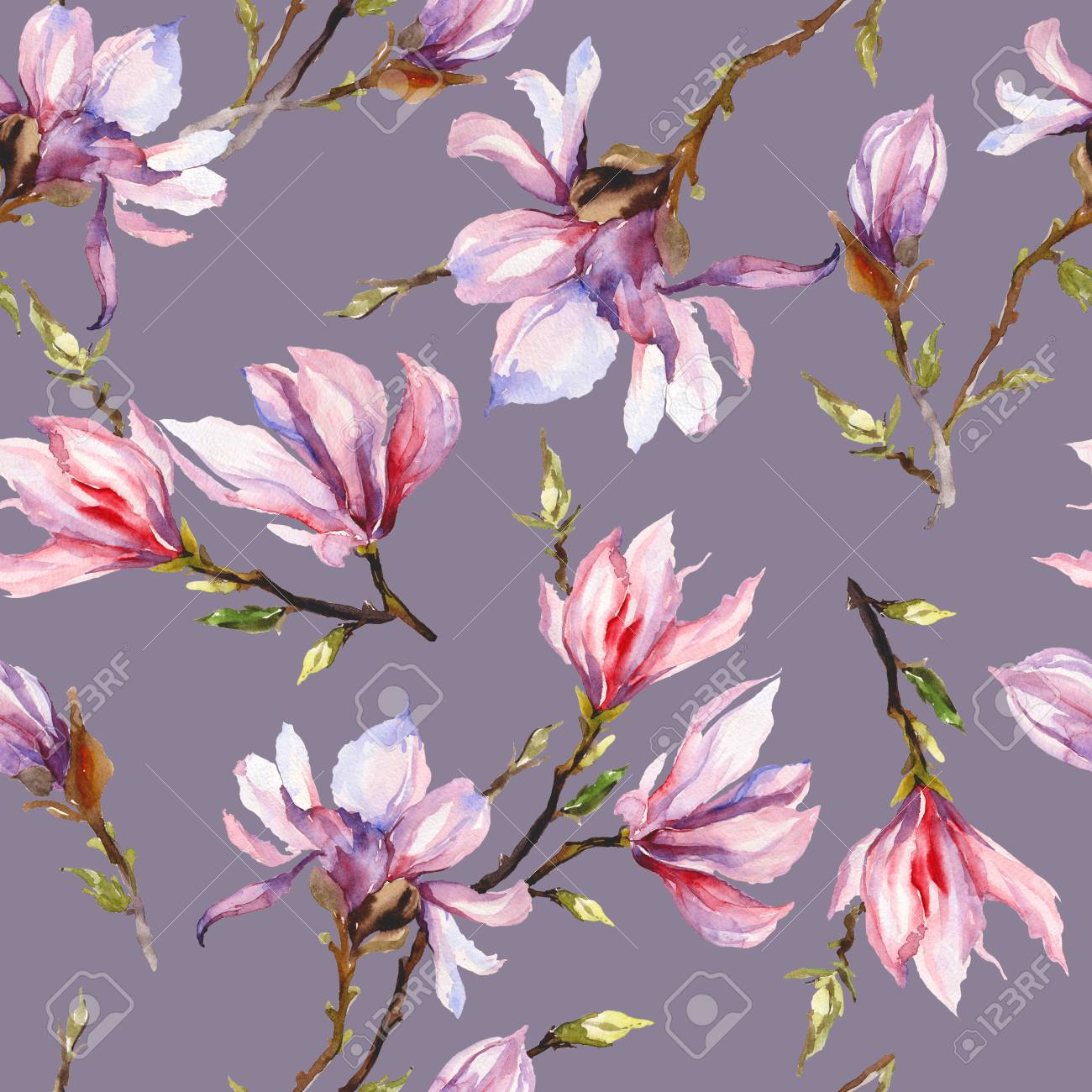 Pink Magnolia Flowers On A Twig On Grey Background Seamless Stock